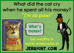 Bernie's Best Jokes by J. E. Bright meme: cat money paw