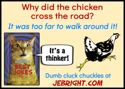 Bernie's Best Jokes by J. E. Bright meme: chicken cross the road