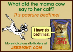 Bernie's Best Jokes by J. E. Bright meme: mama cow pasture