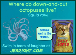 Bernie's Best Jokes by J. E. Bright meme: octopus