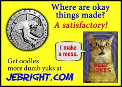 Bernie's Best Jokes by J. E. Bright meme: satisfactory okay