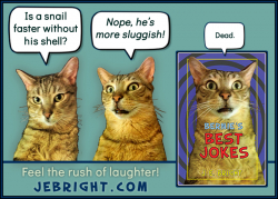 Bernie's Best Jokes by J. E. Bright meme: snail sluggish