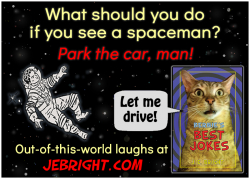 Bernie's Best Jokes by J. E. Bright meme: spaceman