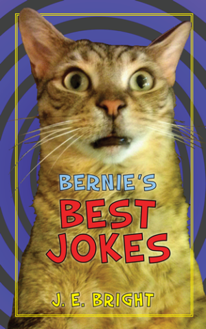 Bernie's Best Jokes cover